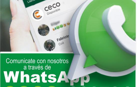 Agendá nuestro WhatsApp